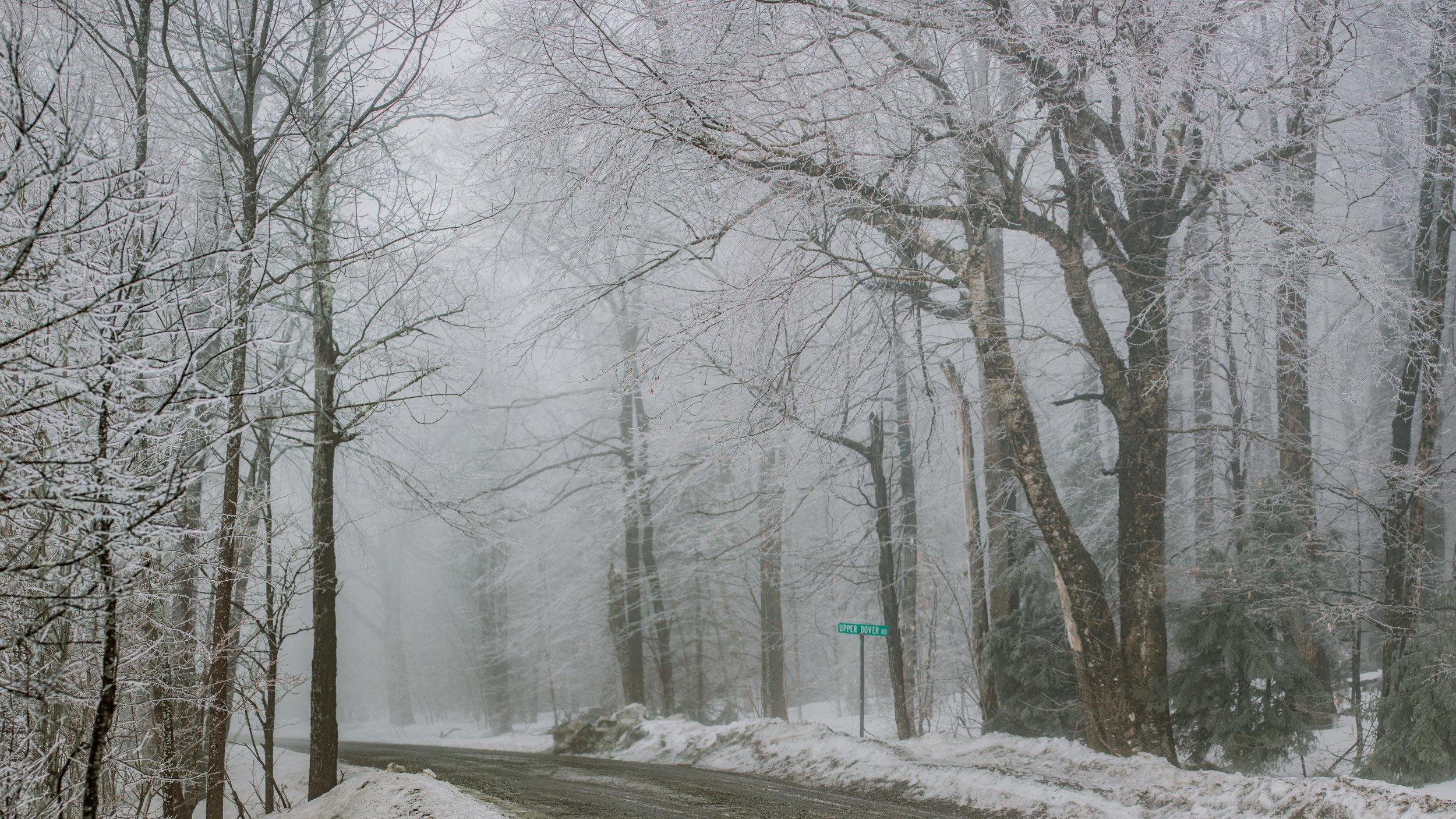 Lorianna_Vermont_Photography_Fog--2.jpg