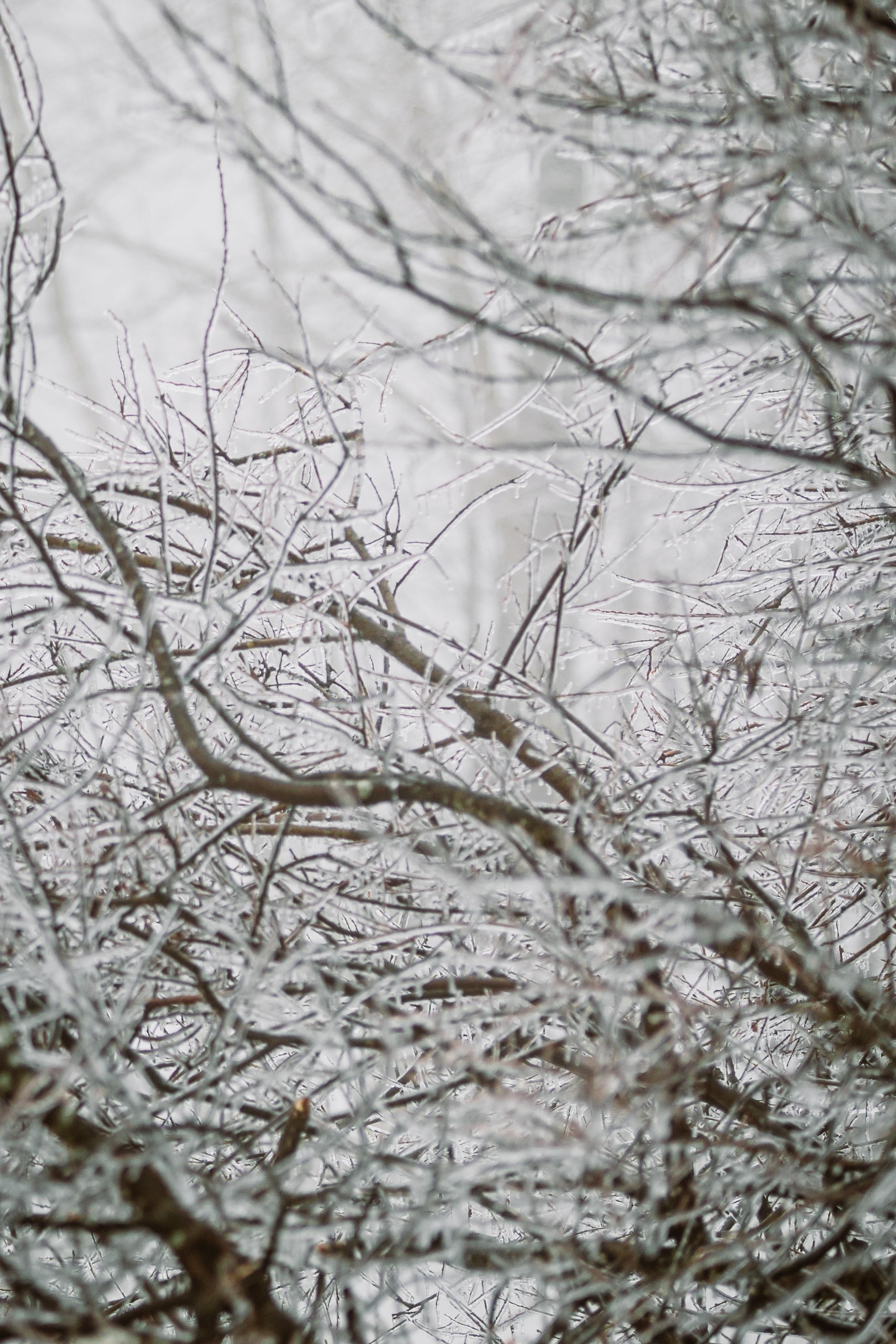 Vermont Winter-5134.jpg