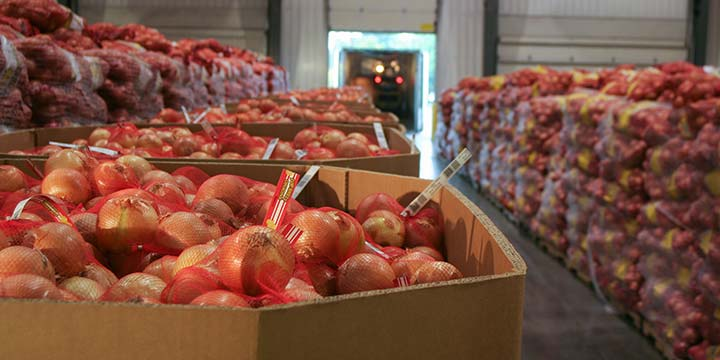 onion packing center.jpg