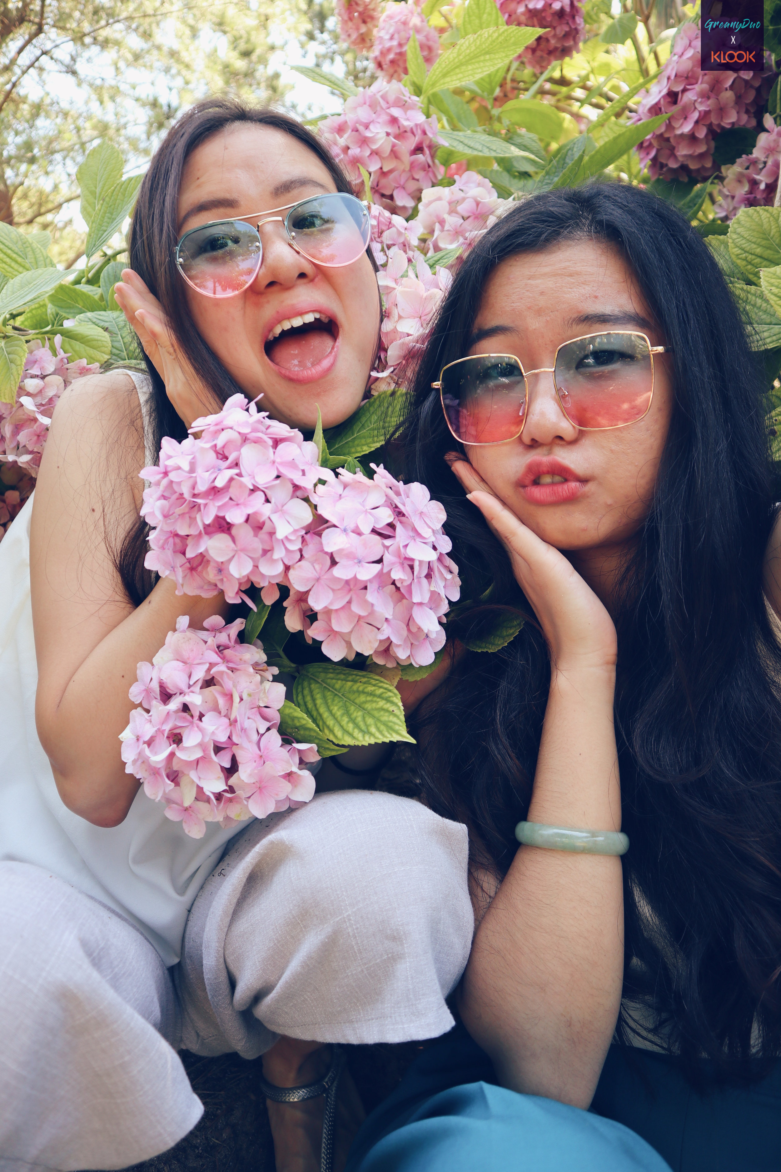 jenny and tina posting with hydrangea flower at hallim park, jeju with sunglasses