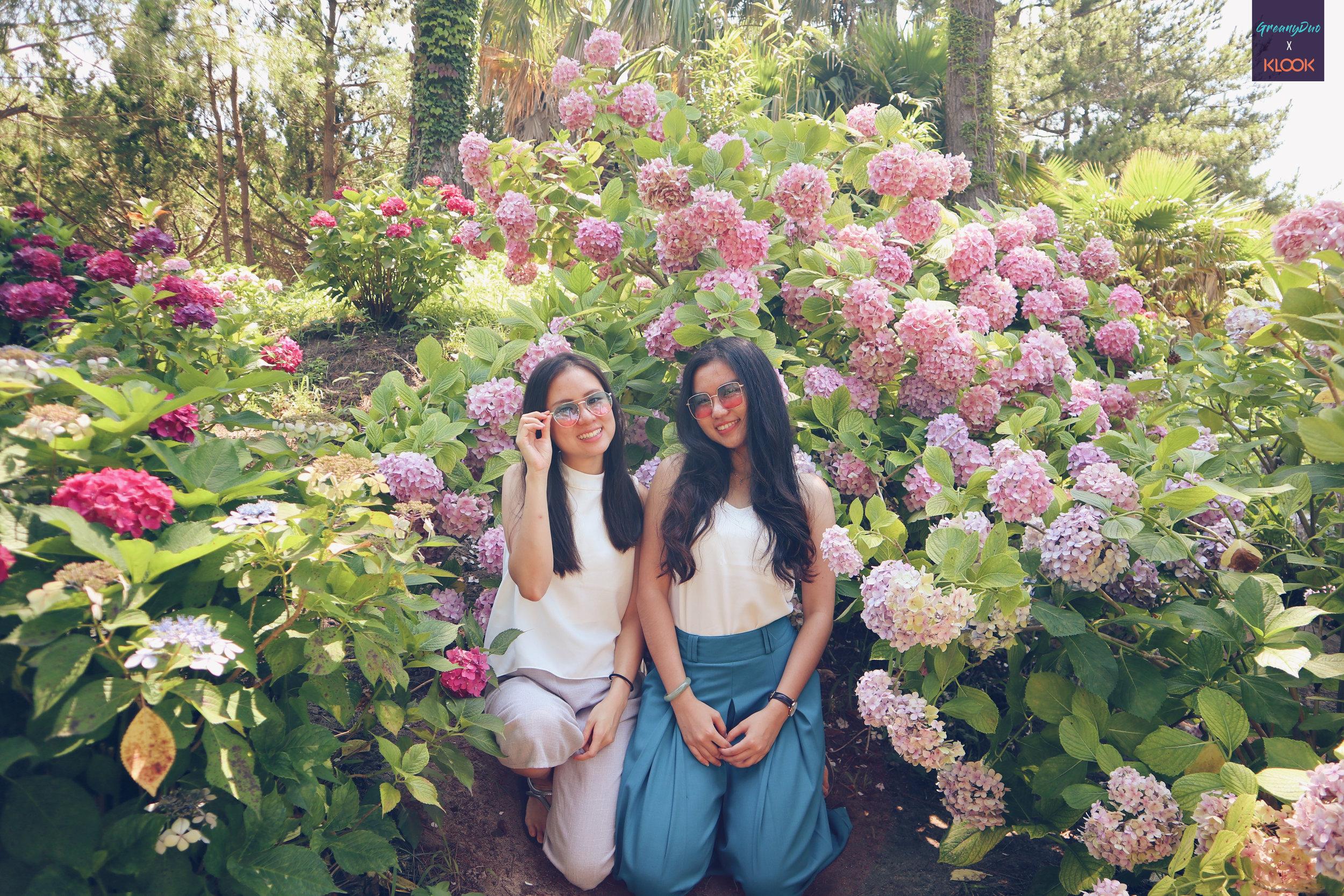 jenny & tina posting with hydrangea flower at halliam park, jeju