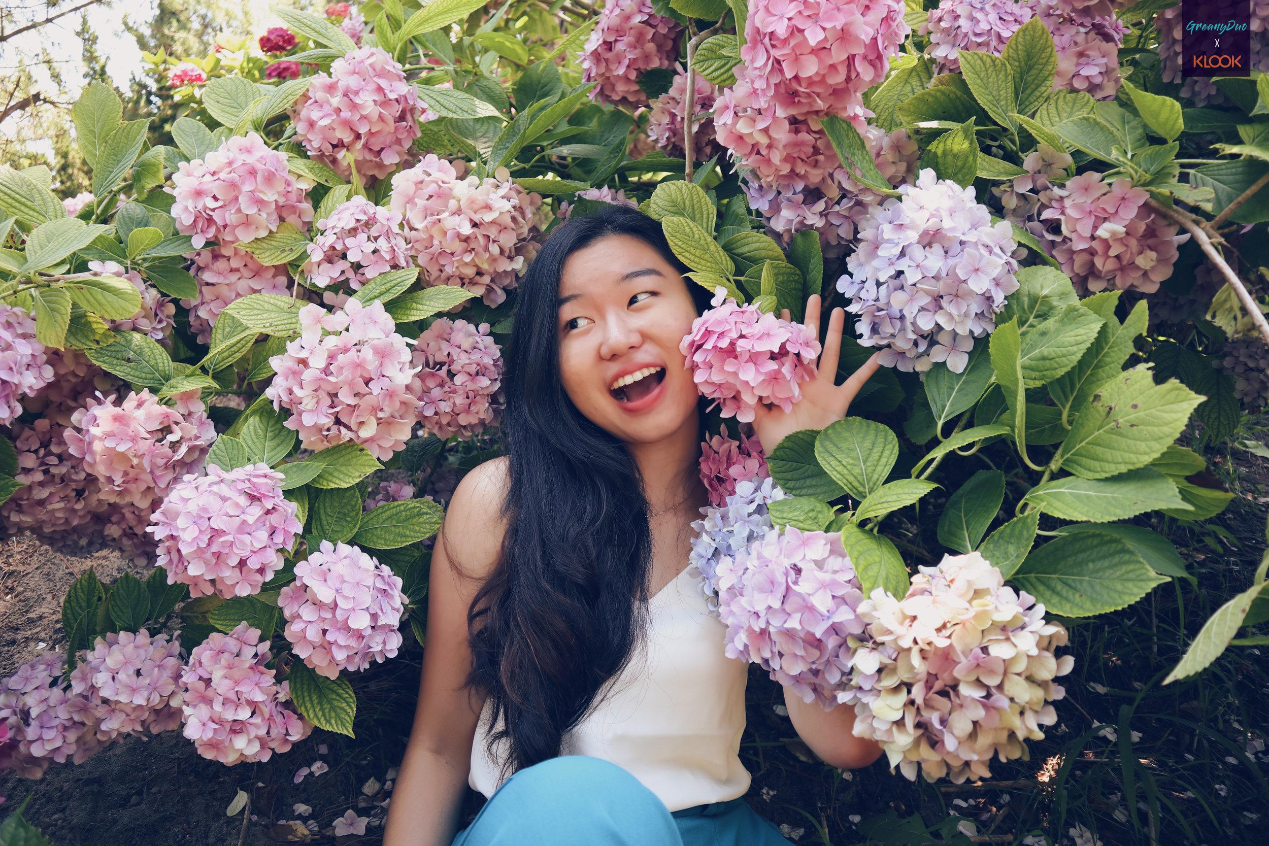 tina posting with hydrangea flower at halliam park, jeju