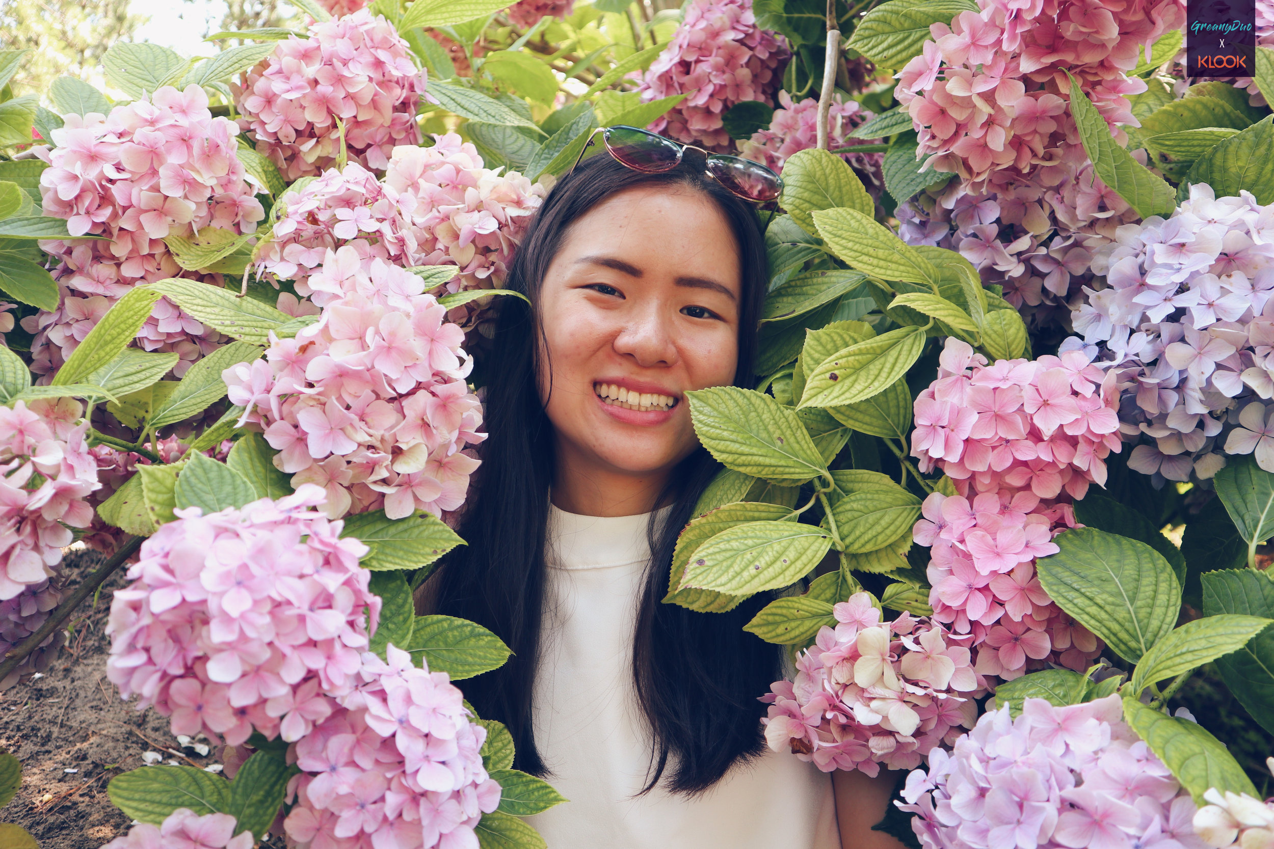 jenny posting with hydrangea flower at halliam park, jeju