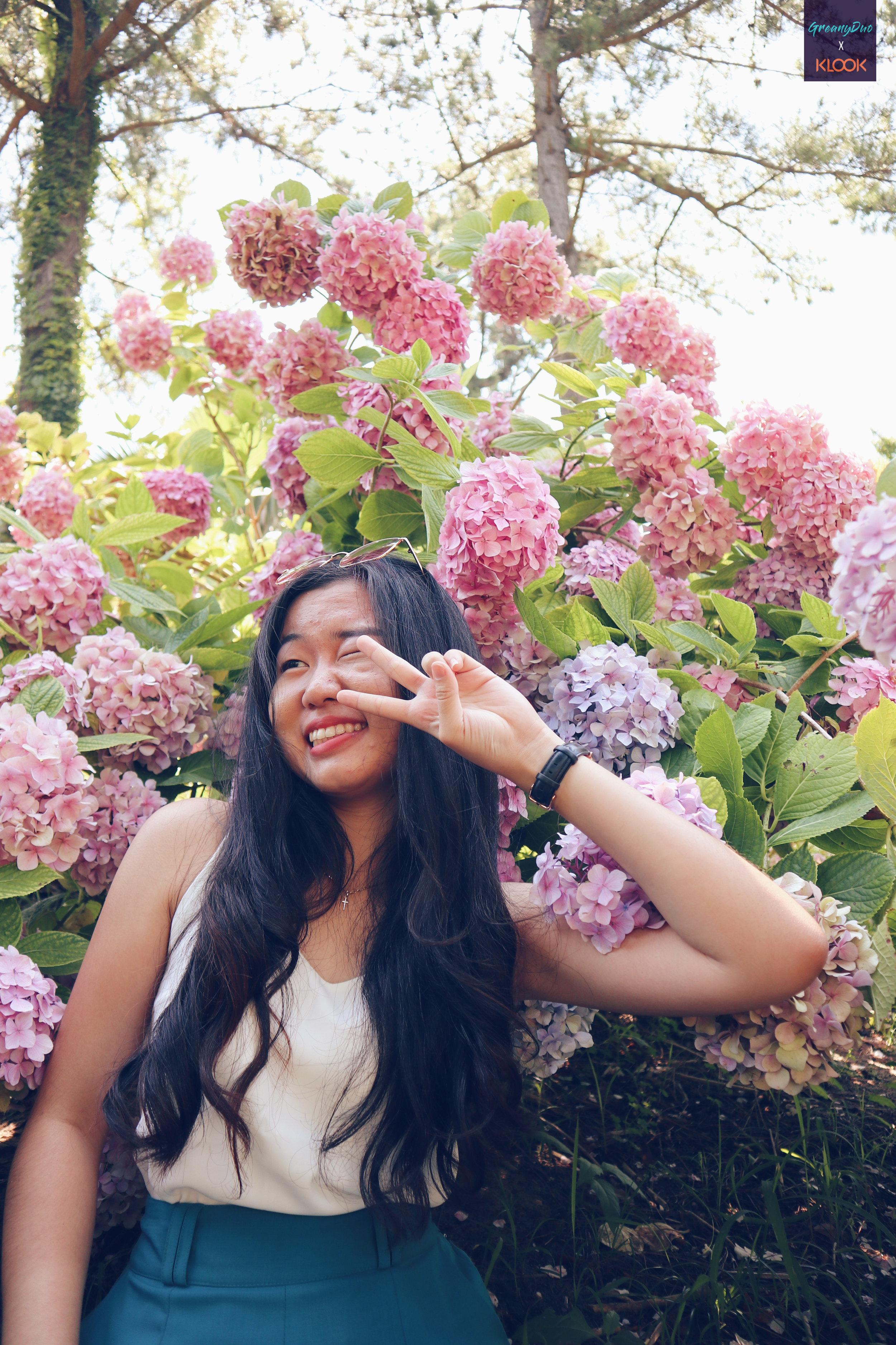 tina posting cute post with hydrangea flower at halliam park, jeju