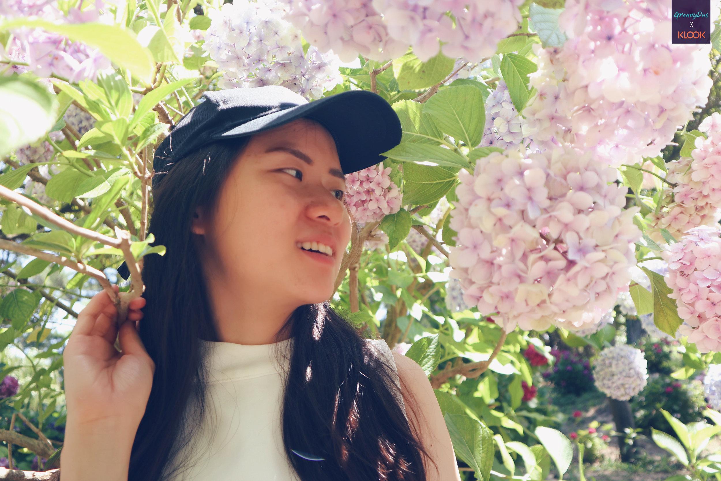 close up of jenny posting with hydrangea flower at halliam park, jeju
