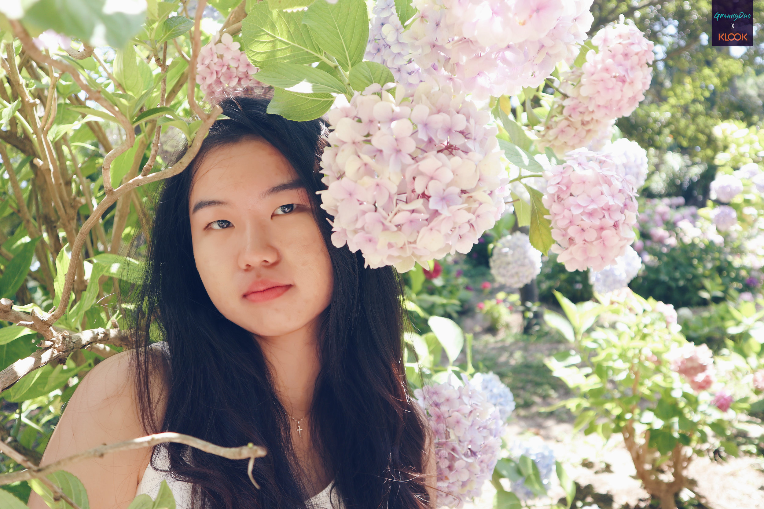close up of tina posting with hydrangea flower at halliam park, jeju