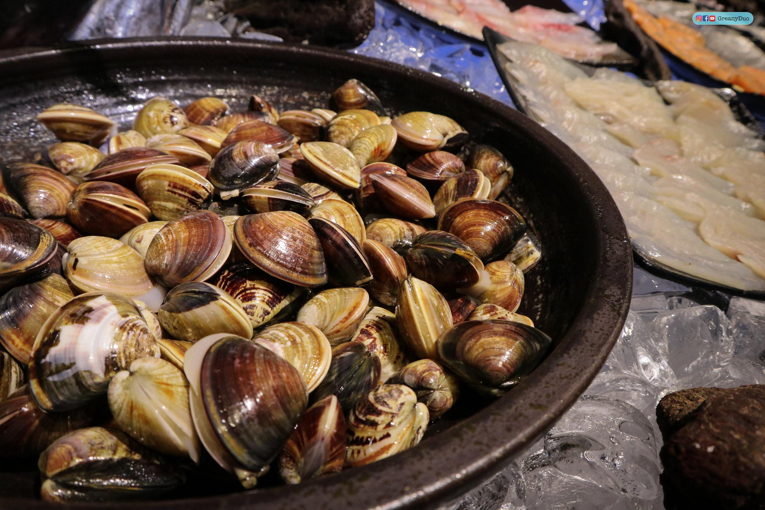 fresh shells at บุฟเฟ่ต์ชาบูไต้หวันที่ Hakkai Shabu Shabu ซีเหมินติง