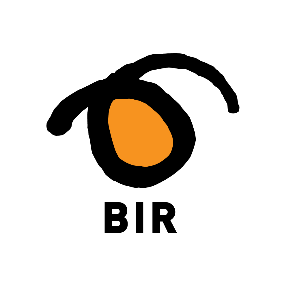 logo_bir.png