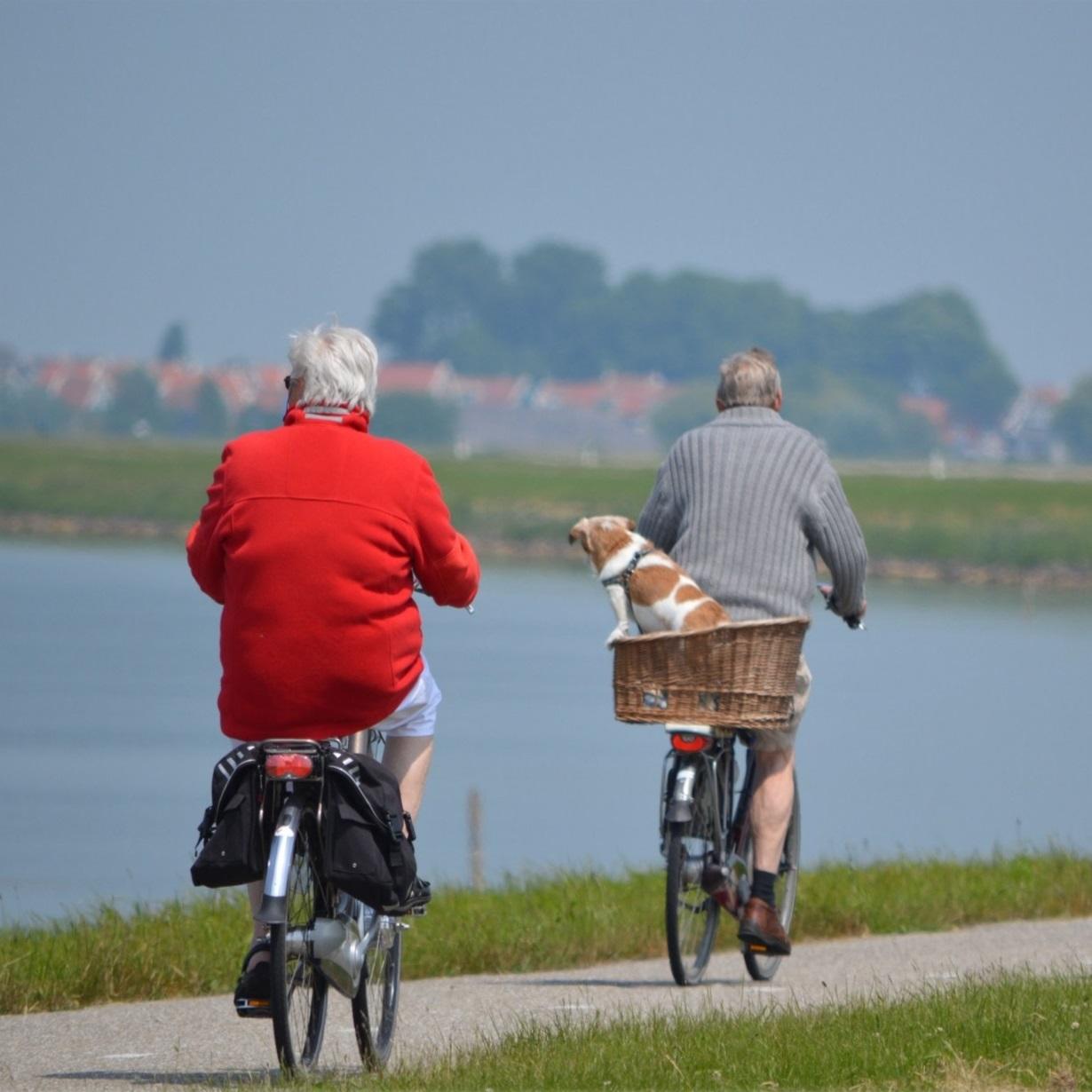 active-cyclist-elderly-264073.jpg
