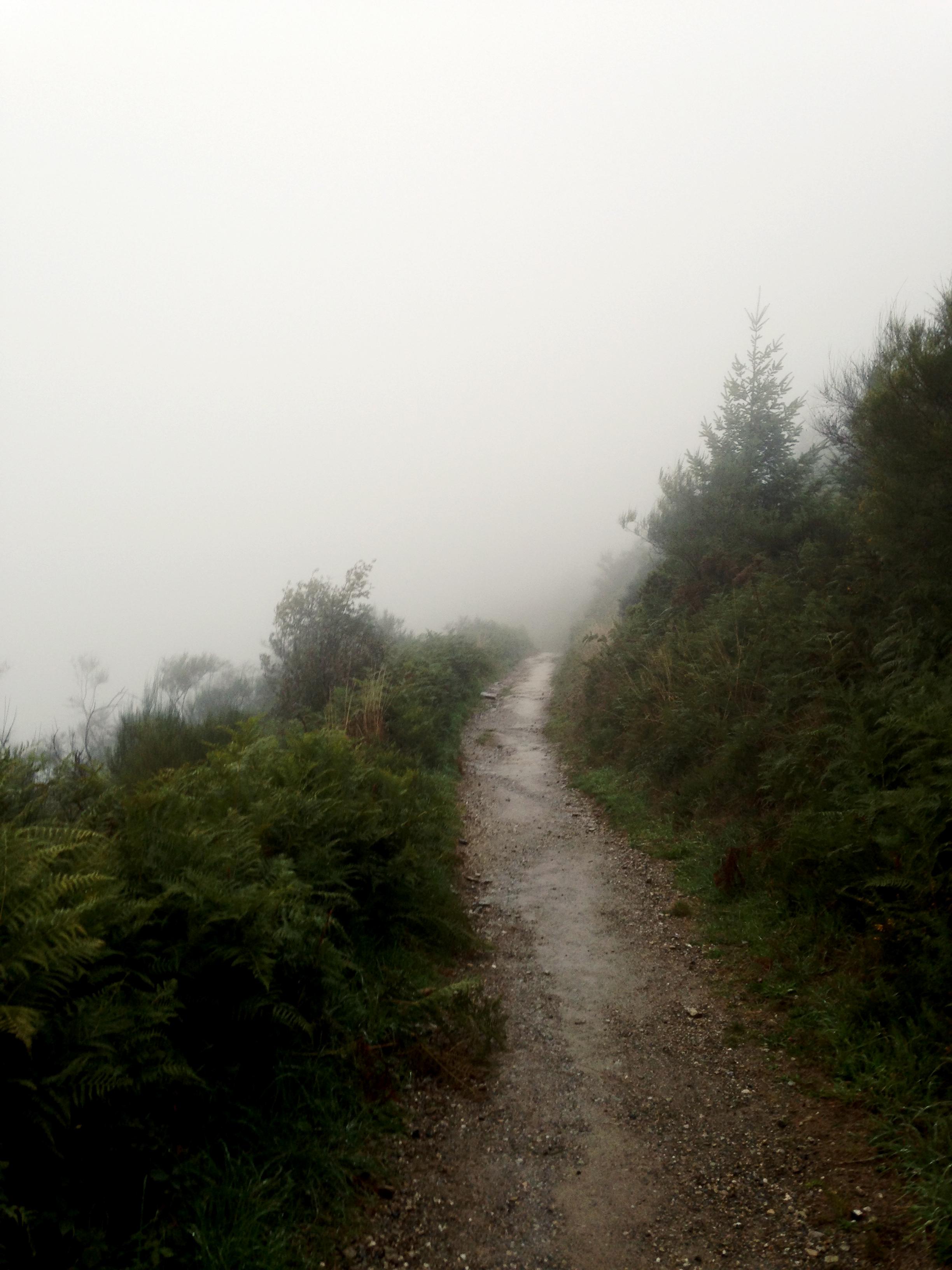 Aamusumu caminolla. Jossain päin Galiciaa, 2015.
