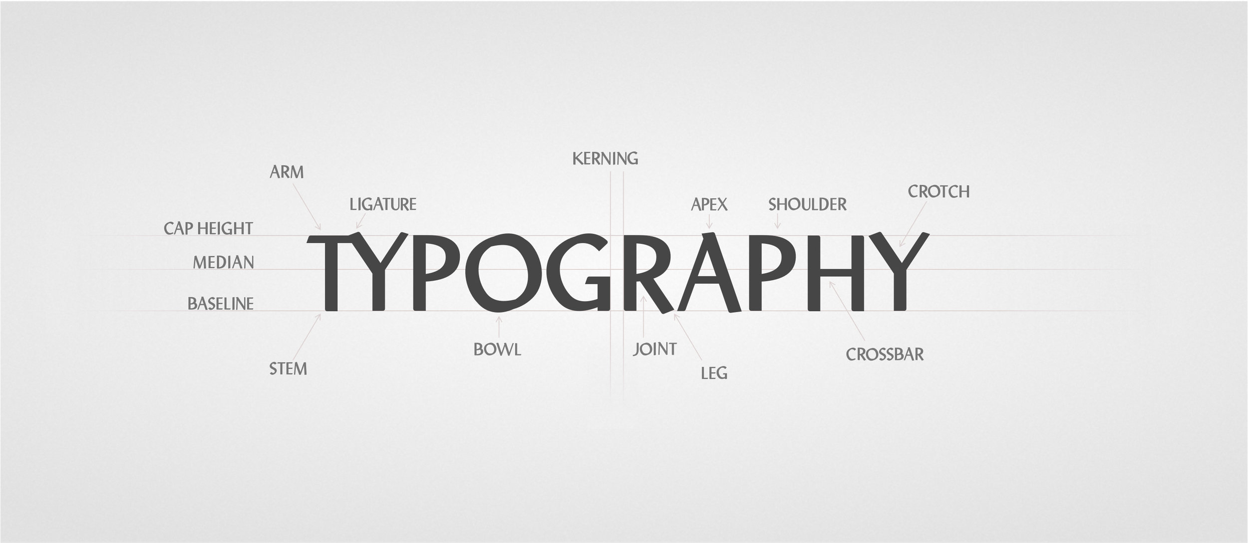 type typography anatomy font attribute design jtb jason burkholder.jpg