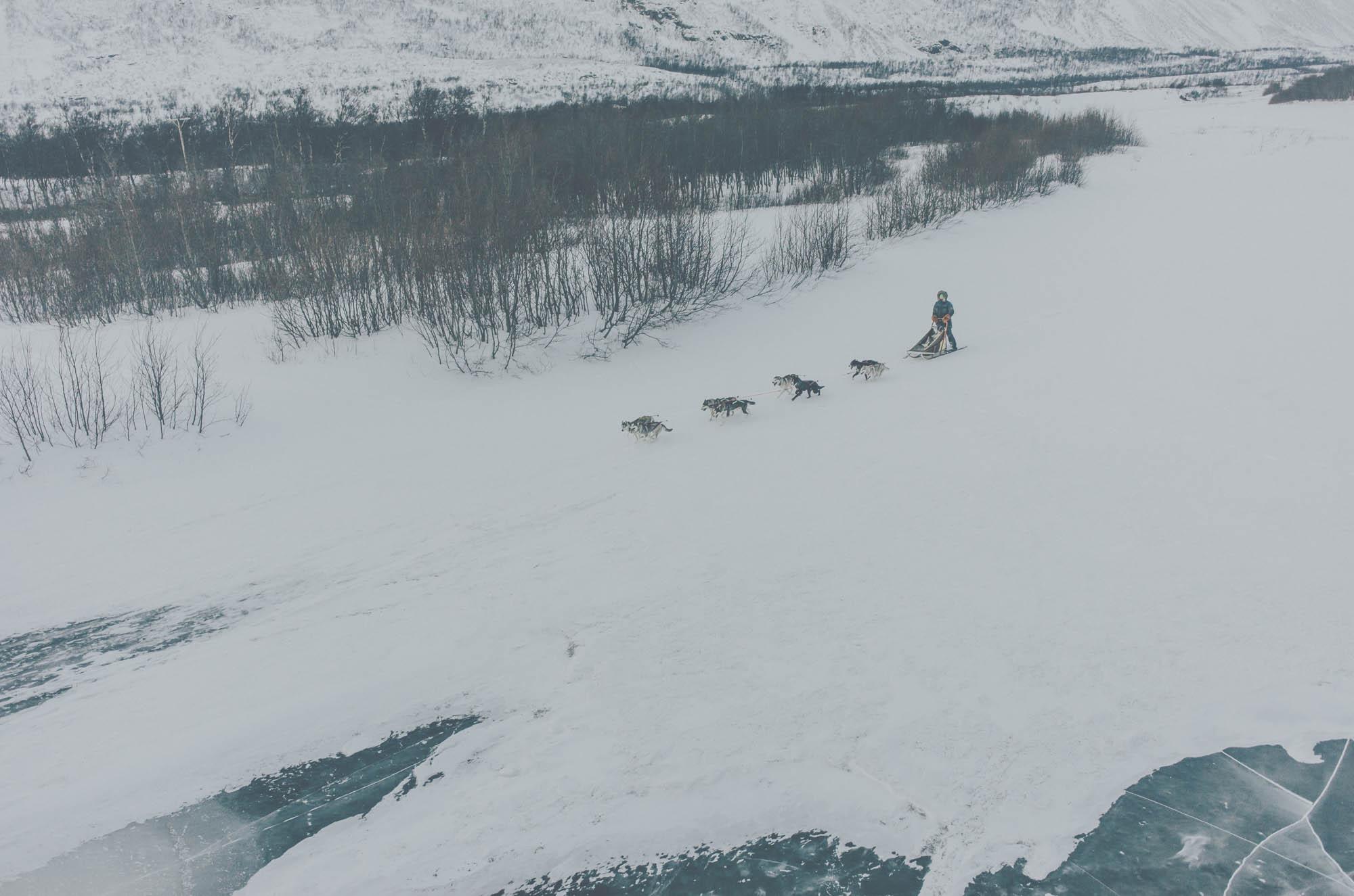 Arcticilo006.jpg