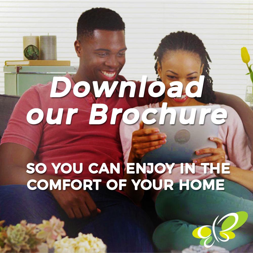 download-everbrite-brochure.jpg