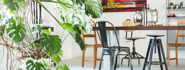 apt-plants.jpg