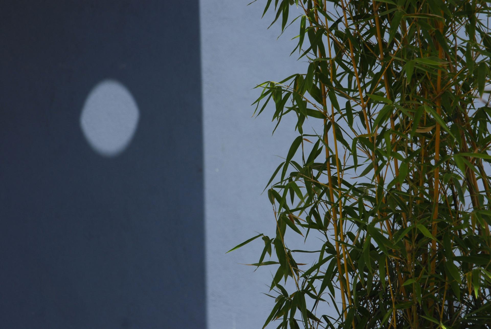 giochi di ombre -