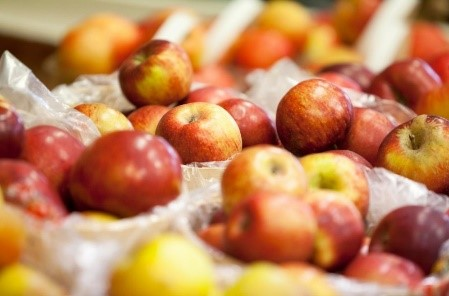 info apples.jpg