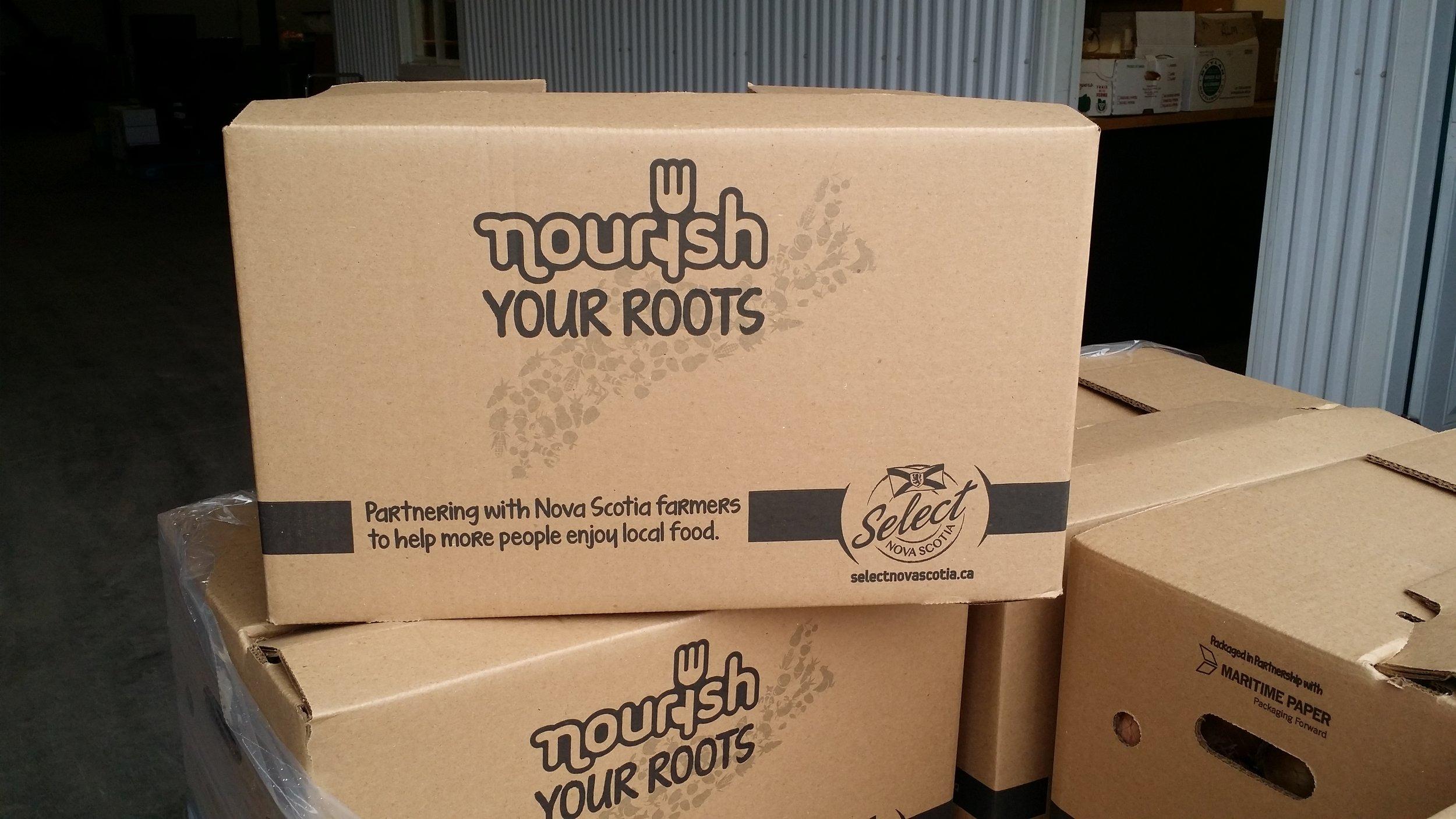 Nourish your roots box.jpg