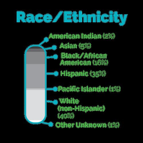 Race%2FEthnicity.png