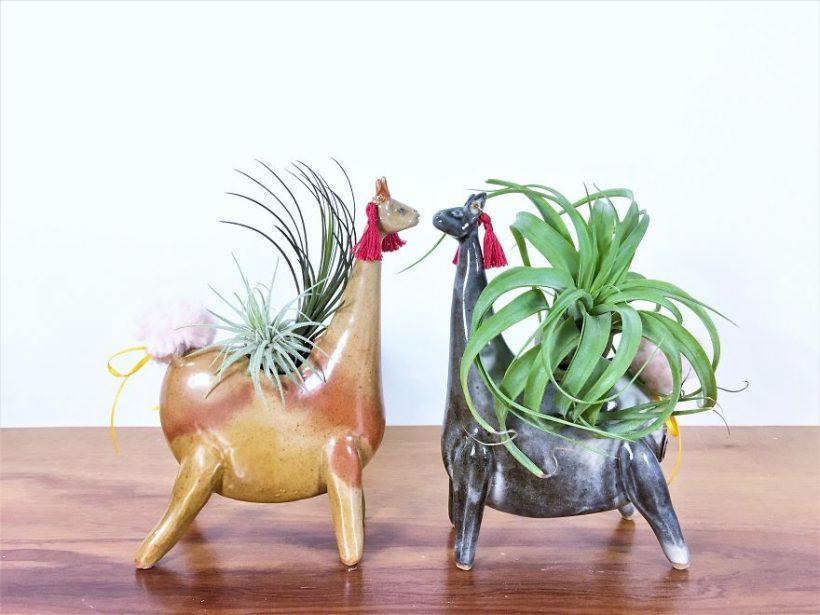 funny-animal-ceramic-vases-pots-3-820x615.jpg