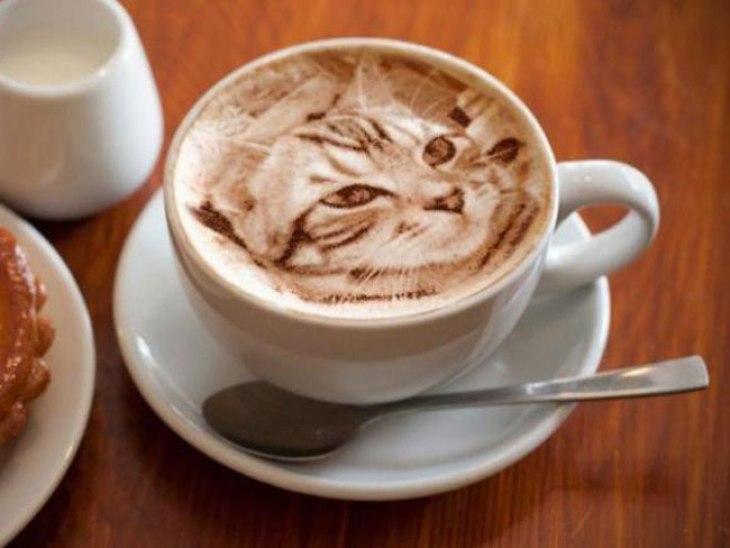 Cat Latte Art via Cube Breaker