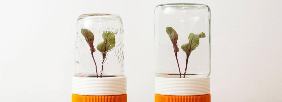3D Printing Mini-Greenhouse