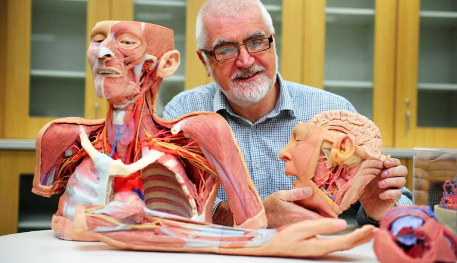 3D Printing Anatomical Models