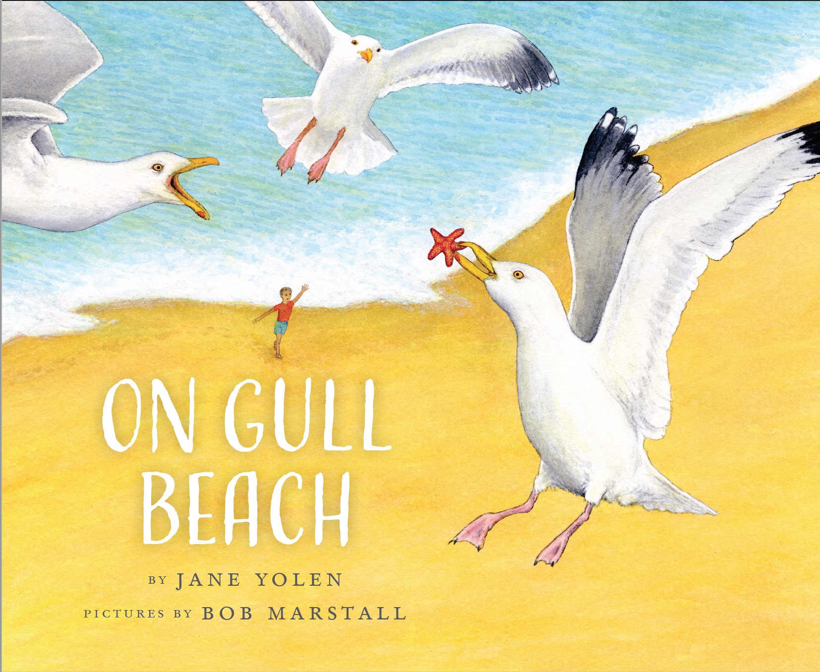 On Gull Beach cover.jpg