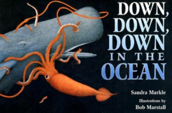 Down...Oceanjacket_000.jpg