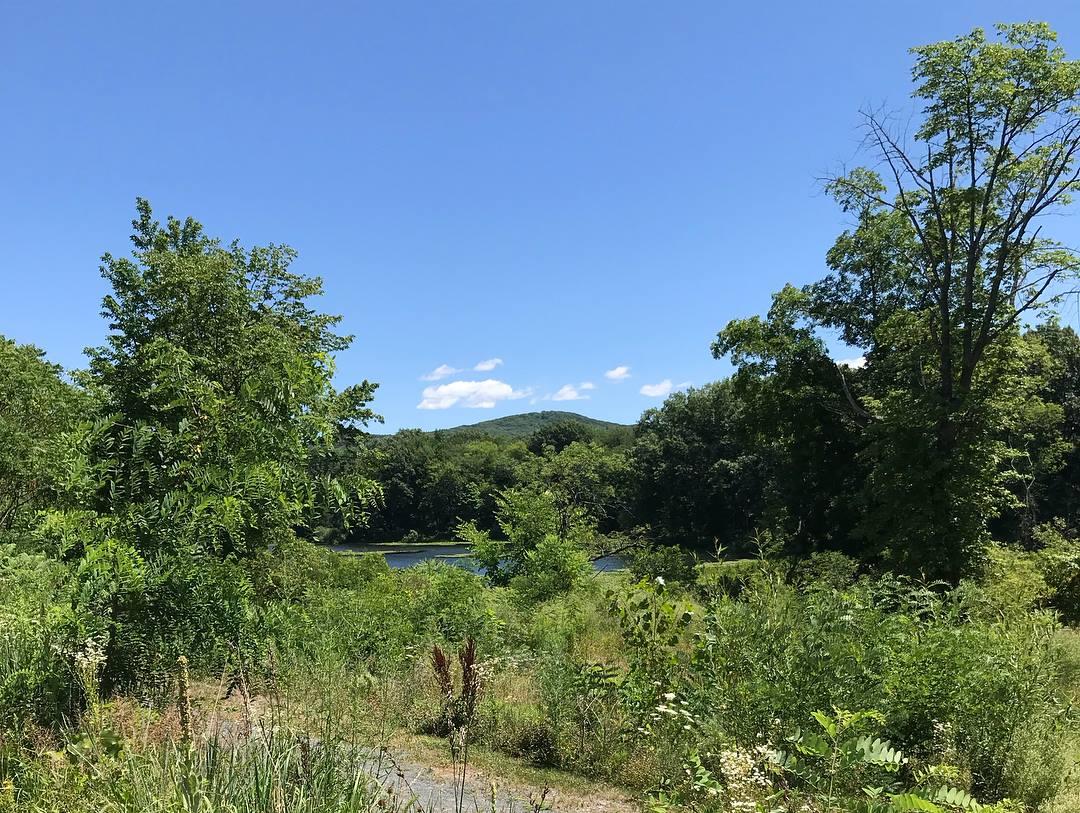 Pond back of Eastworks.jpg