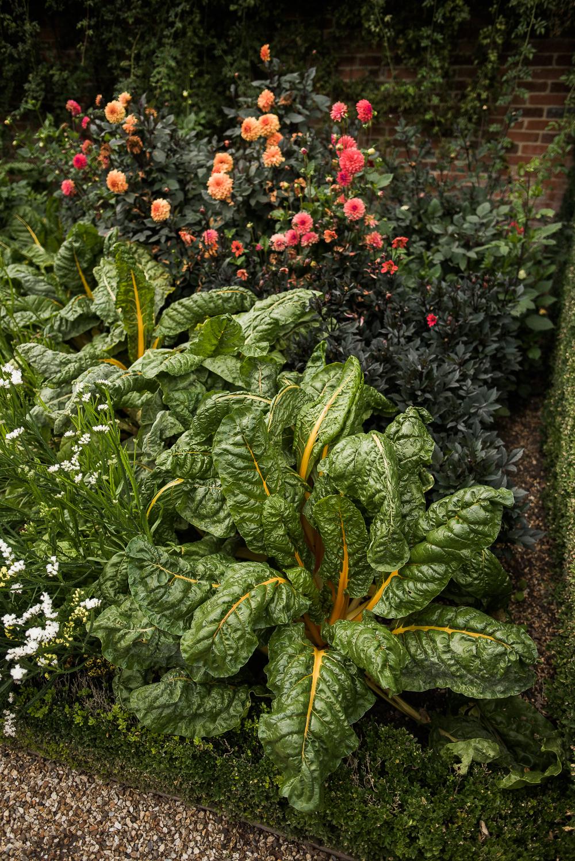 West Green House Garden-1051.jpg