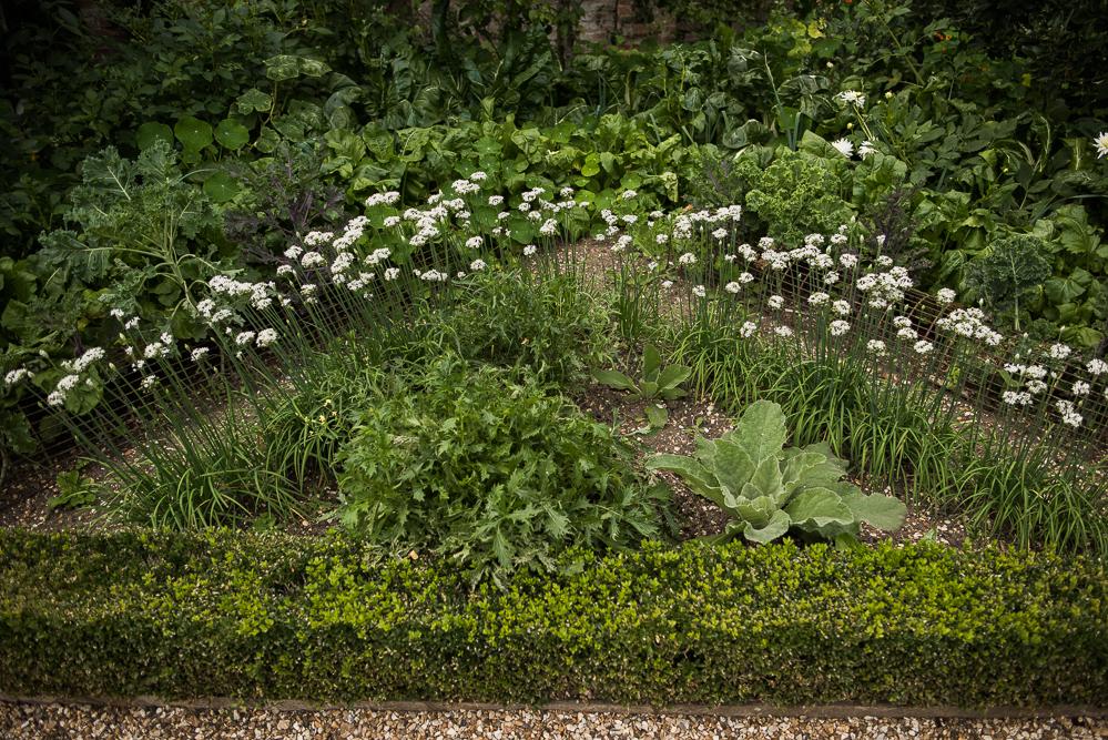 West Green House Garden-1058.jpg