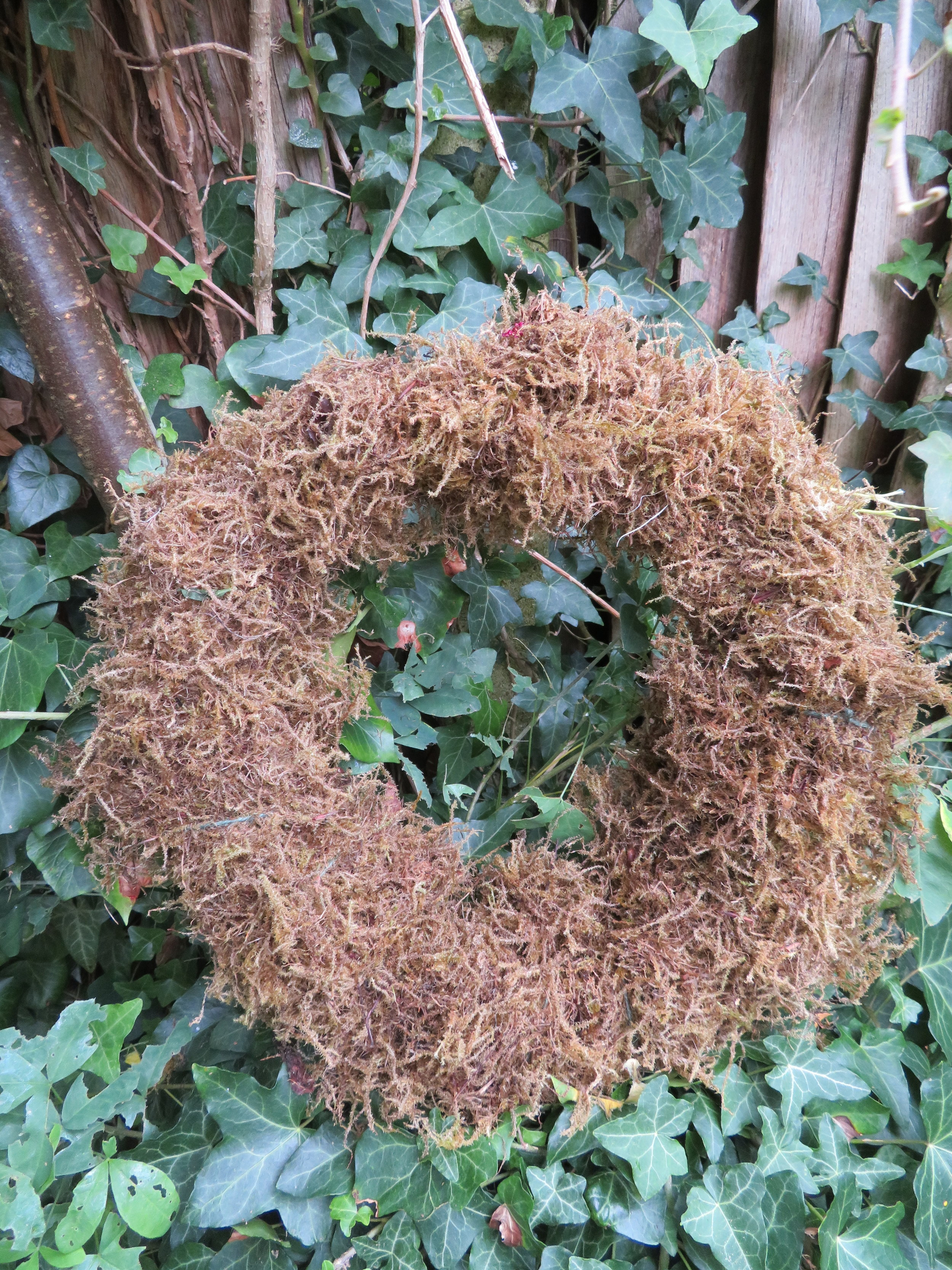 Moss secured around the willow frame with twine