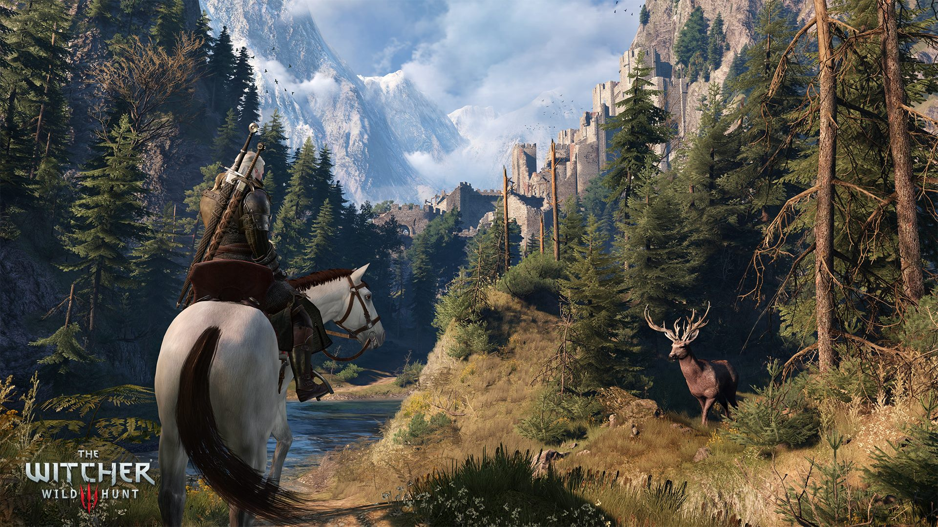 The-Witcher-31.jpg