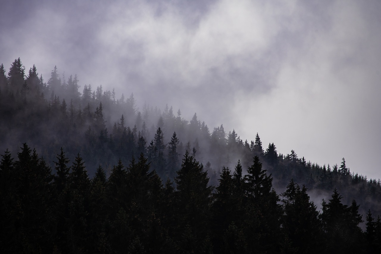 cloudy-3855175_1280.jpg