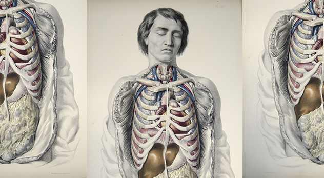Bodies.jpg