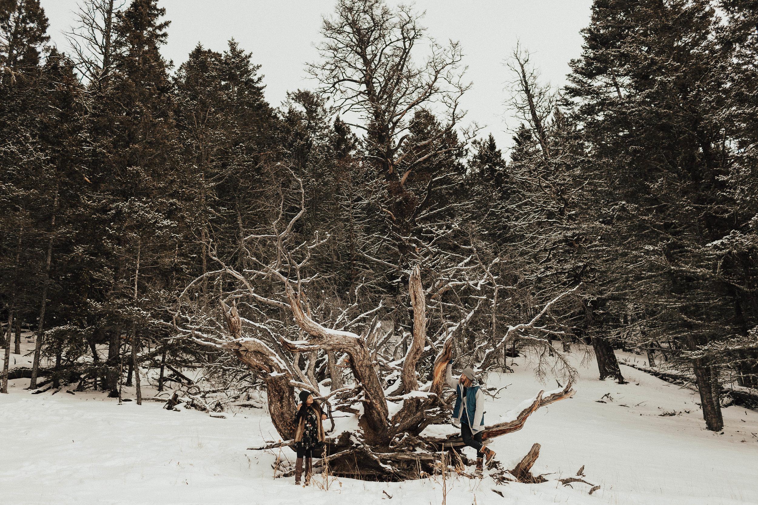 Banff Engagement Photographer - Winter Mountain Adventure Engagement Session - Michelle Larmand Photography-074