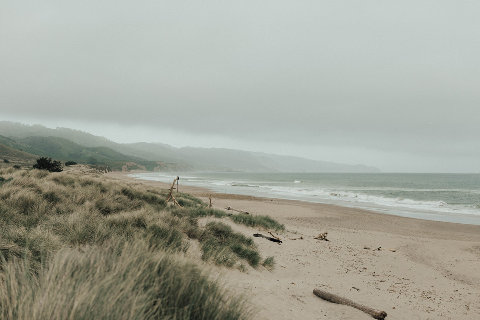 Point Reyes Elopement061