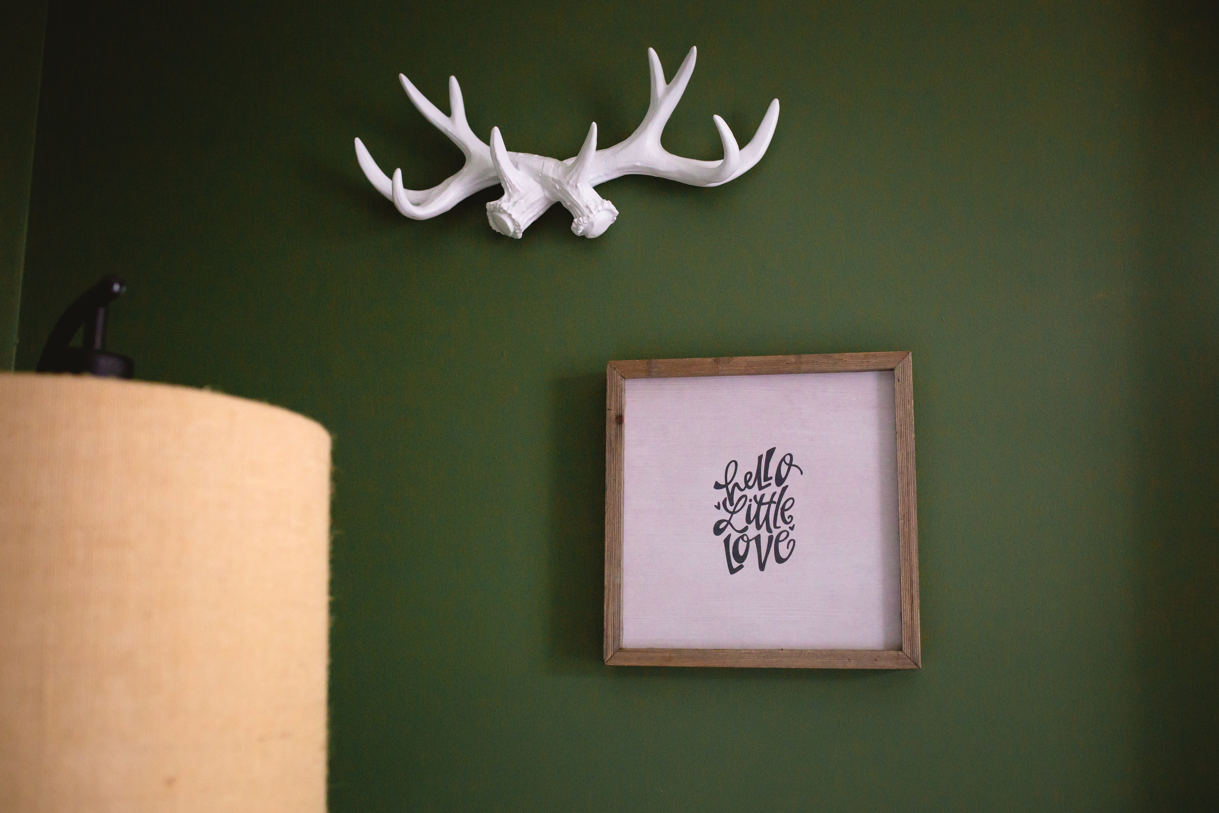 nursery details small photo and antlers