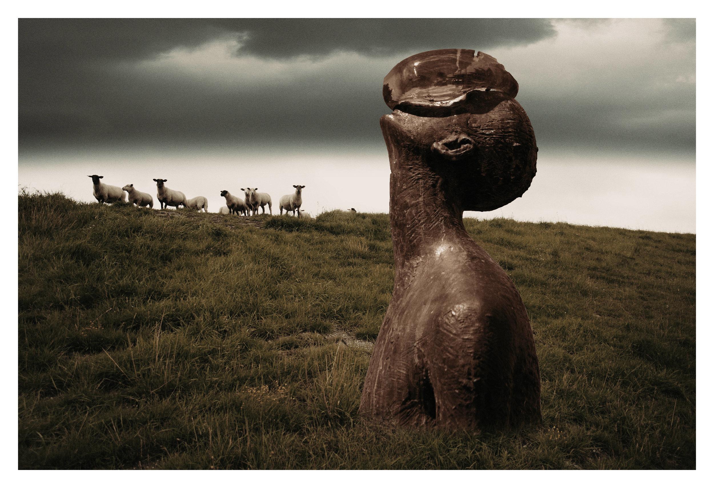 Sheep. (2018)
