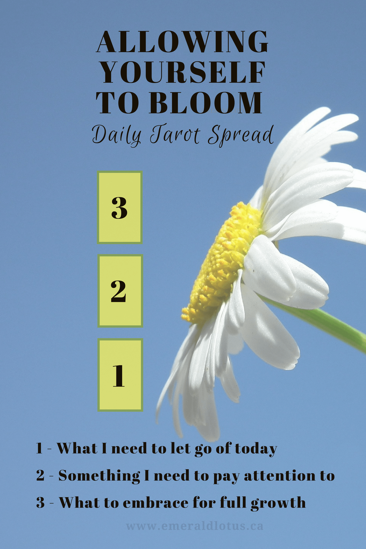 growth-bloom-daily-tarot-spread-1.png