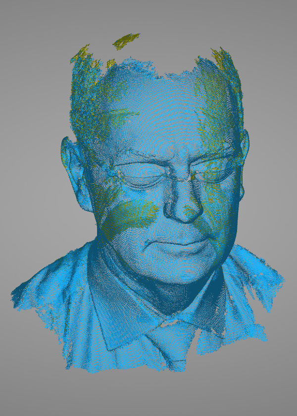 'Head of the Head', initial scan point-cloud