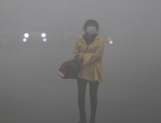 """Air pollution also effects neurological development and cognitive ability and can trigger asthma and childhood cancer, the report says. Children exposed to excessive pollution may also be at greater risk of chronic conditions such as cardiovascular disease in adulthood."" -"