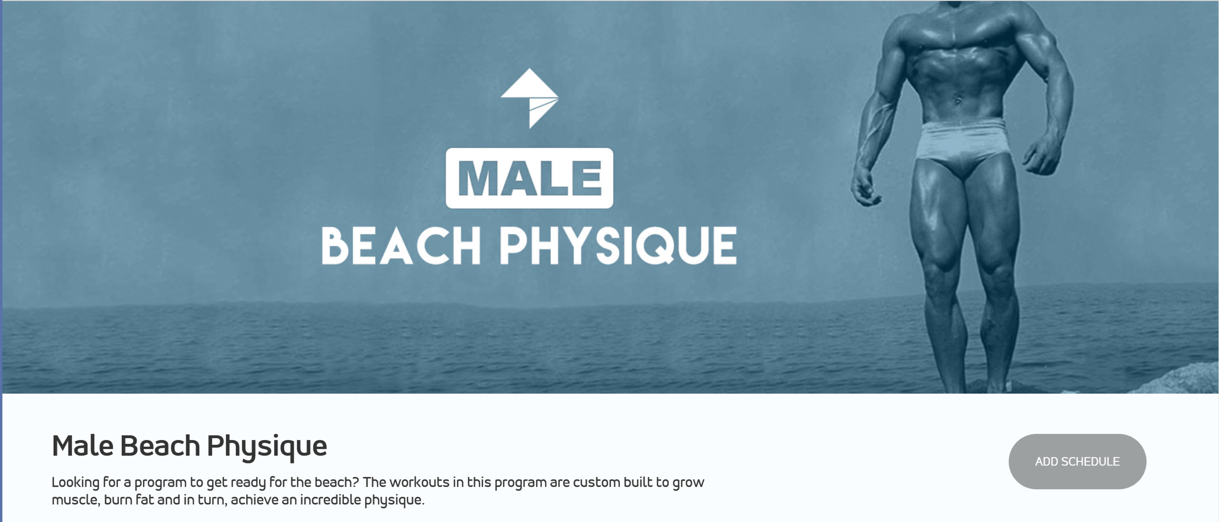 Male Beach Physique.png