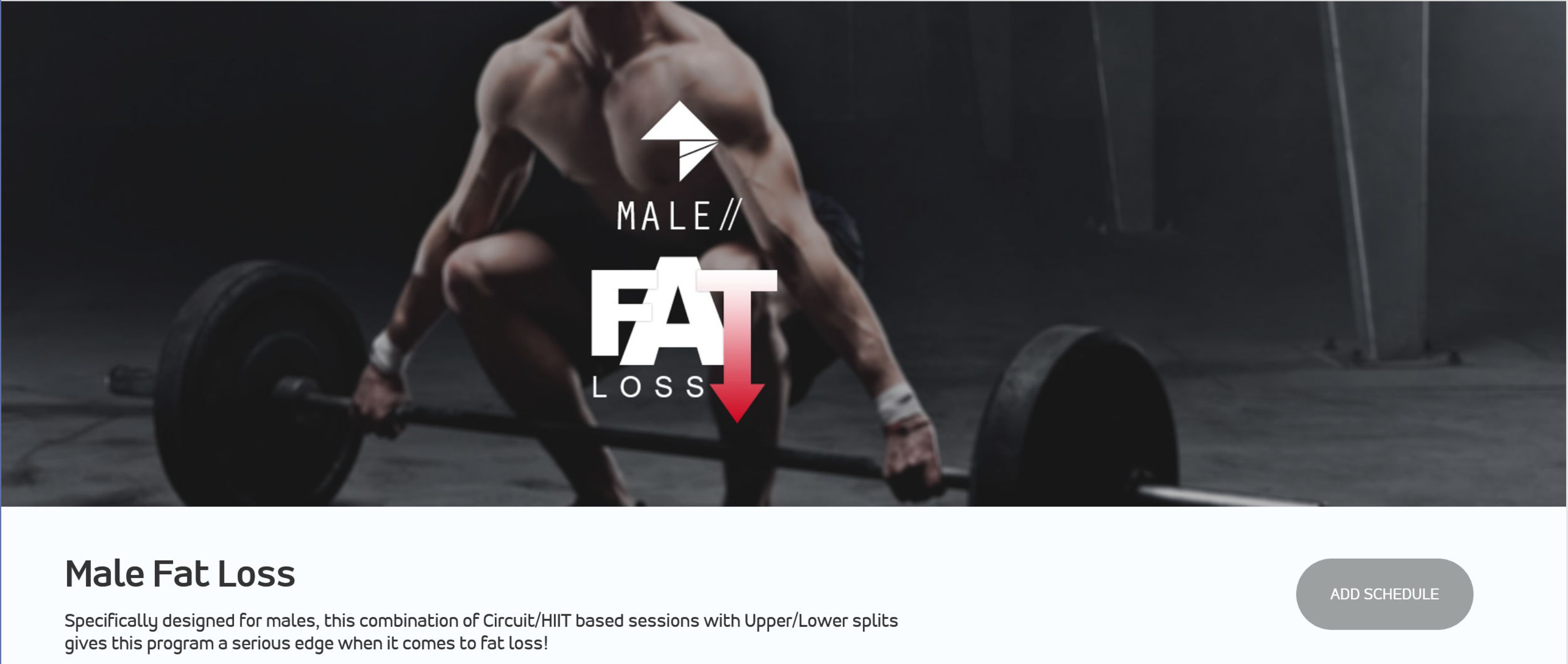 Male Fat Loss.png
