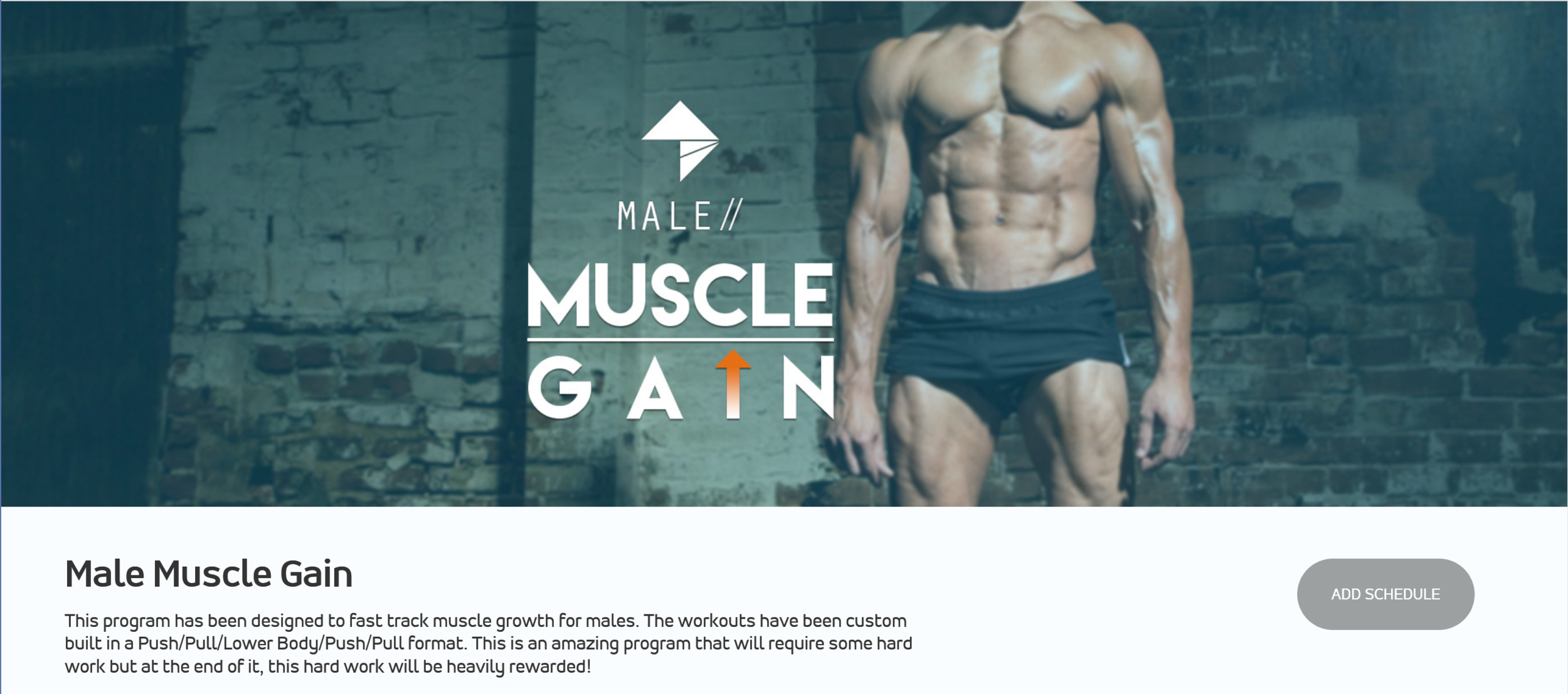 Male Muscle Gain.png