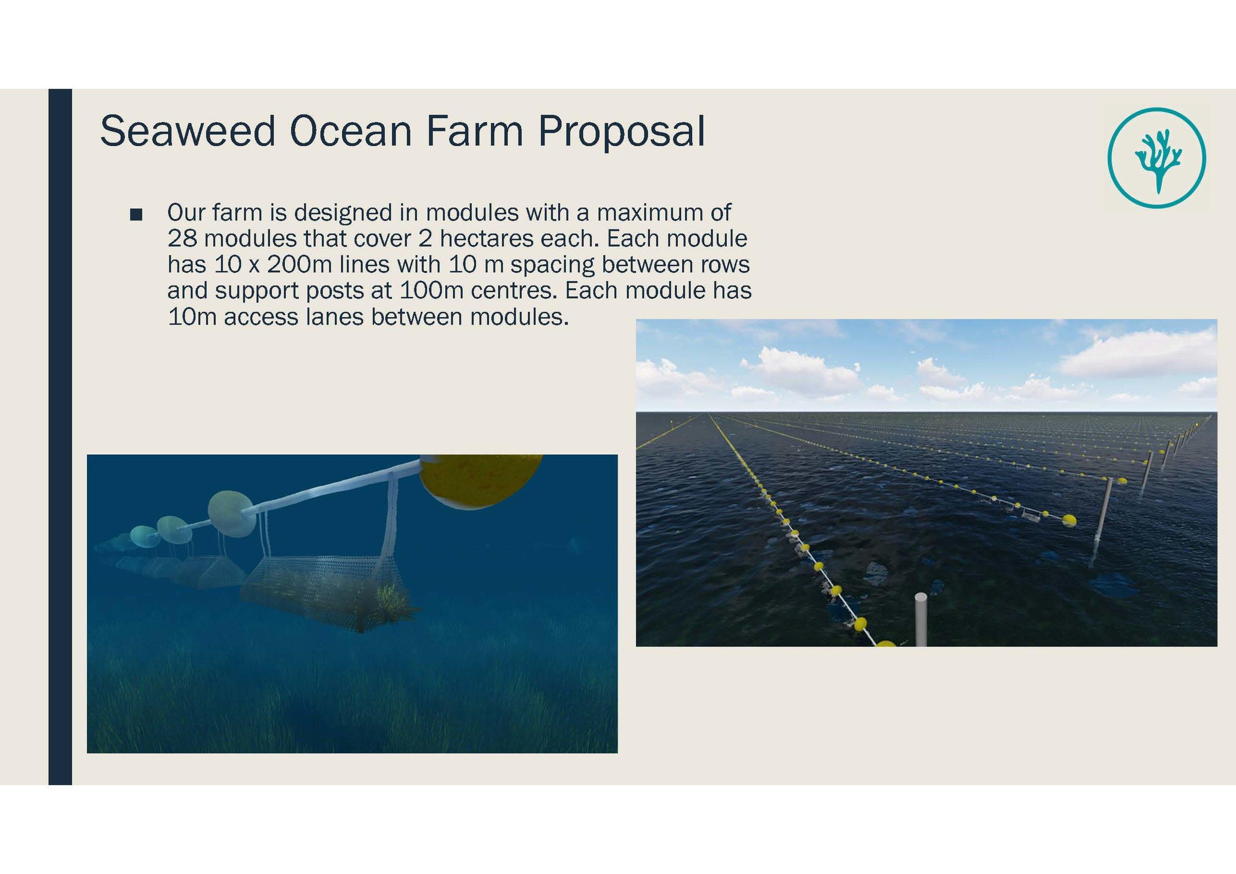 Seaweed Ocean Farm Moreton Bay_Information Pack_Page_08.jpg