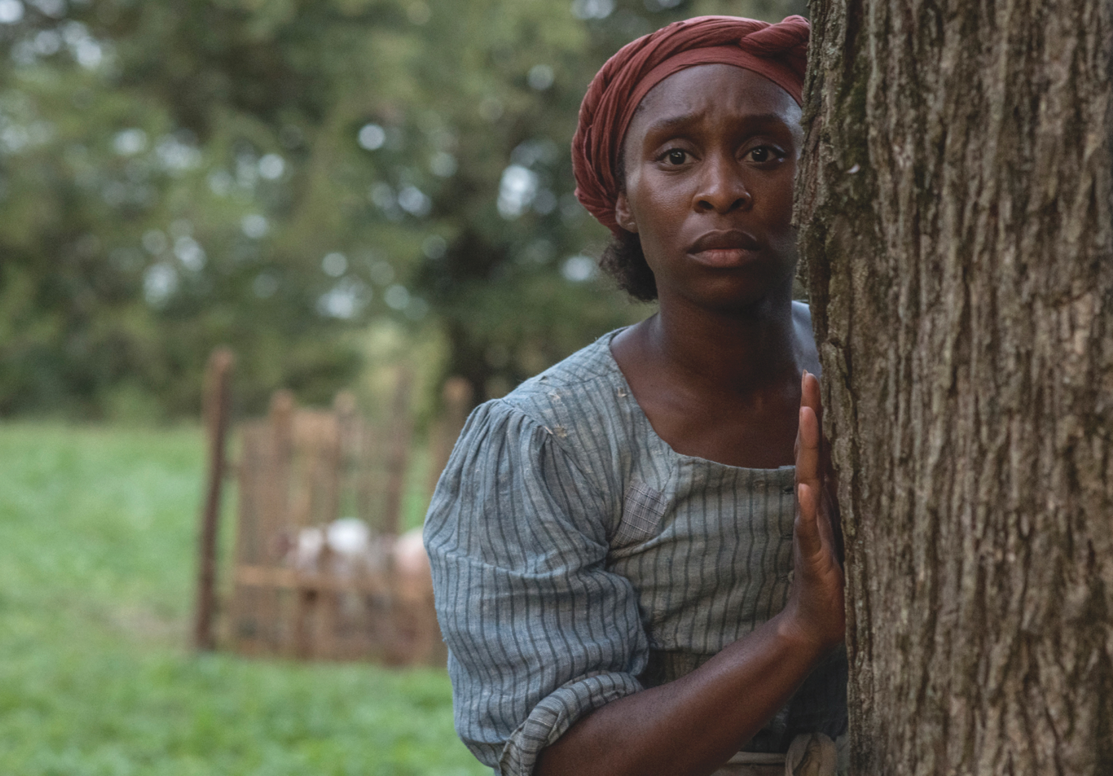 """The world premiere for """"Harriet"""" will take place at the Toronto International Film Festival in September 2019. (Photo: YouTube)"""