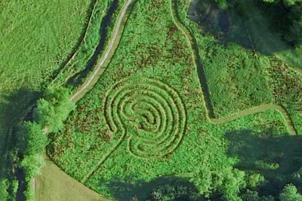 labyrinth-green-outdoors