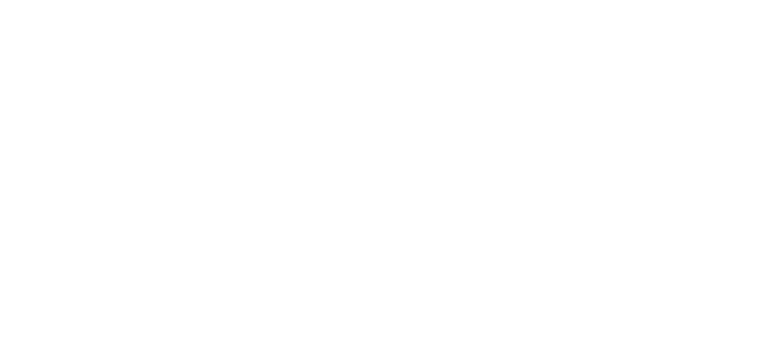 DetailKingz_Licensed-and-Insured-Correction-Protection-and-Restoration.png