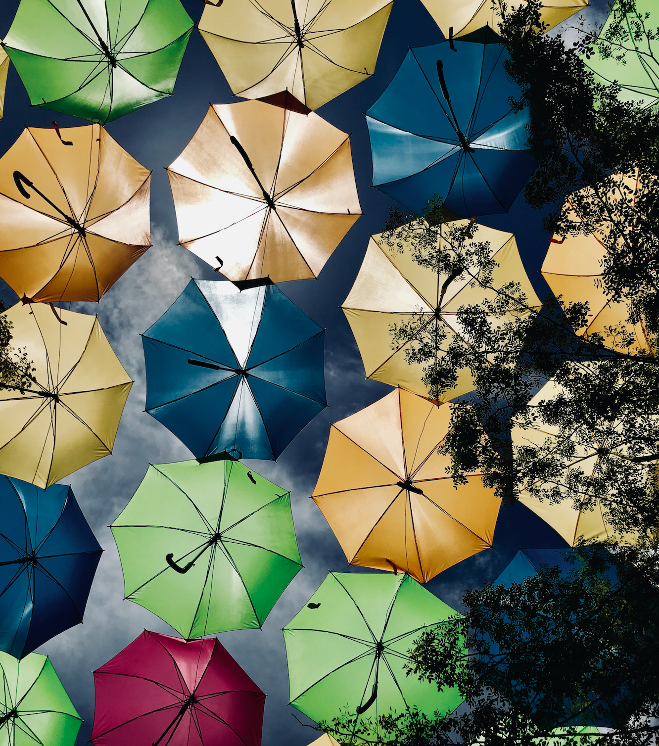 The Umbrella Sky